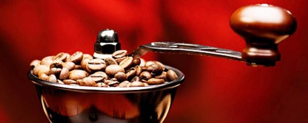 Le café Arabica
